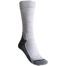 Icebreaker Hike+ Lite Socks - Merino Wool, Crew (For Women) in Blizzard/White/Oil - Closeouts