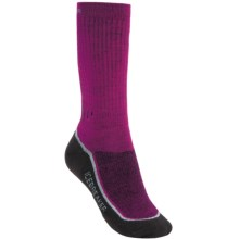 Icebreaker Hike+ Medium Cushion Crew Socks - Merino Wool (For Women) in Cranberry/Silver/Java - 2nds