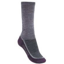 Icebreaker Hike+ Medium Cushion Crew Socks - Merino Wool (For Women) in Silk/Silver/Vintage - 2nds