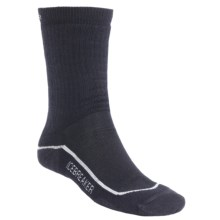 Icebreaker Hiking Socks - Merino Wool, Medium Cushion (For Men and Women) in Ink/Silver/Ink - 2nds