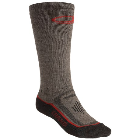Icebreaker Ski Mid Socks - Merino Wool, Over-the-Calf, Midweight (For Men) in Brown/Dark Brown