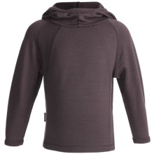 Icebreaker Sport 320 Rascal Hooded Shirt - Merino Wool, Long Sleeve (For Kids) in Brazil - Closeouts
