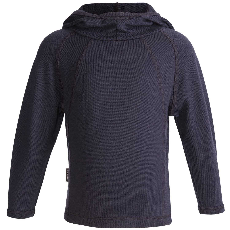 Icebreaker sport 320 rascal hooded shirt merino wool for Merino wool shirt long sleeve