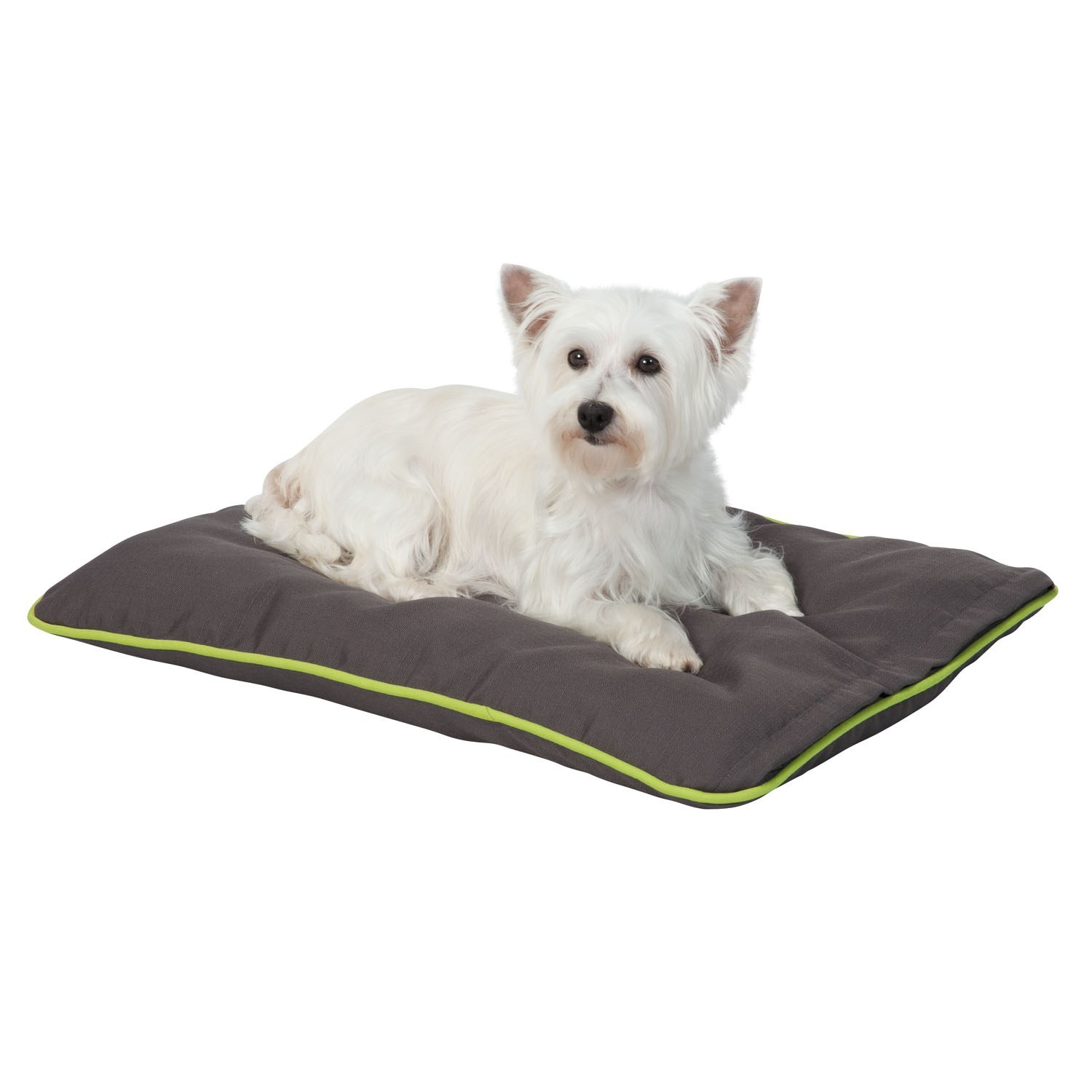 mats memory dog mat info crate foam s bath black