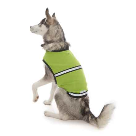 Insect Shield ® Reflective Safety Dog Vest in Green - Closeouts