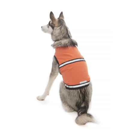 Insect Shield ® Reflective Safety Dog Vest in Orange - Closeouts