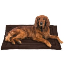 Jax & Bones Corduroy Cozy Dog Mat - Large in Chocolate - Closeouts