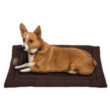 Jax & Bones Corduroy Cozy Dog Mat - Medium in Chocolate - Closeouts