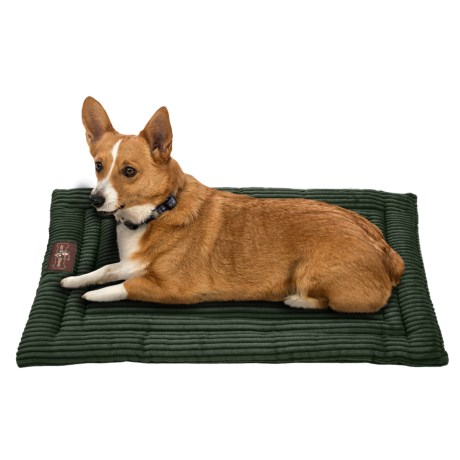 Jax and Bones Corduroy Cozy Dog Mat Medium