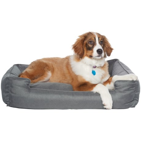 "Jax & Bones Plush Velour Lounge Dog Bed - 34x27"" in Candid Iron"
