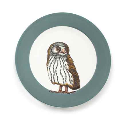 """Jersey Pottery Woodland Creature Salad Plate - 9"""", Bone China in Owl - Closeouts"""