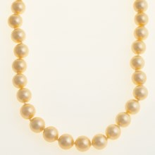 Jokara Shell Pearl Necklace - 10mm in Champagne - Closeouts