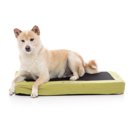 "K&H Pet Products K&H Pet Comfy N' Dry Indoor-Outdoor Pet Bed - 18x26"" in Lime Green"