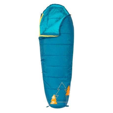 Kelty 20°F Little Tree Sleeping Bag - Short, Mummy (For Kids) in Blue