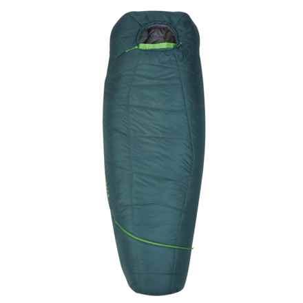 Kelty 20°F Tru Comfort ThermaPro Sleeping Bag - Mummy, Regular in Green - Overstock