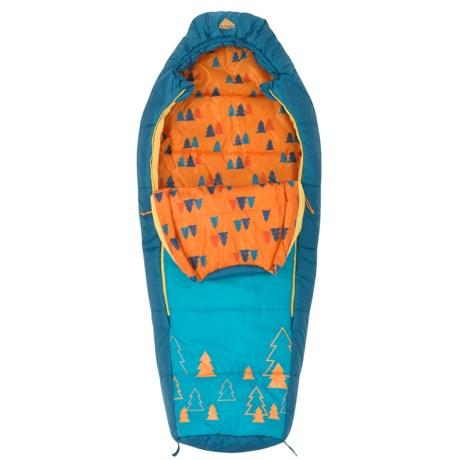 Kelty 30°F Woobie Sleeping Bag - Short, Mummy (For Kids) in Blue