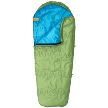 Kelty 40°F Little Dipper Sleeping Bag - Mummy, Short (For Kids) in Lime - Closeouts