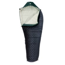 Kelty Cosmic 35°F Sleeping Bag - Synthetic, Long Mummy in Asst - Closeouts