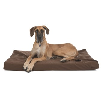 "Kimlor Memory-Foam Dog Bed - 35x53"" in Brown"