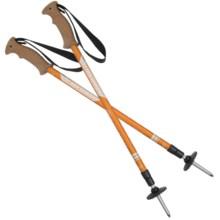 Komperdell Cork Grip Trekking Poles in Trekmaster/Asst - Closeouts