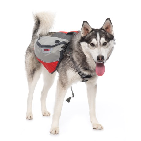 Kong Expedition Dog Pack - M in Red Grey