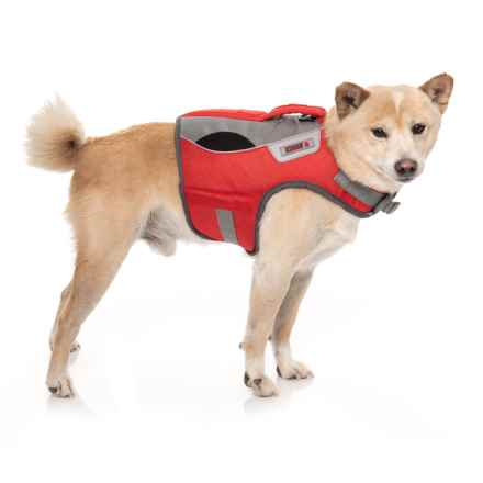 Kong Sport AquaPro Dog Flotation Vest - Small in Red Grey - Closeouts
