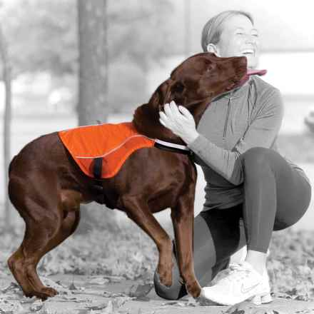 Kurgo Reflect and Protect Active Dog Vest in Orange - Closeouts