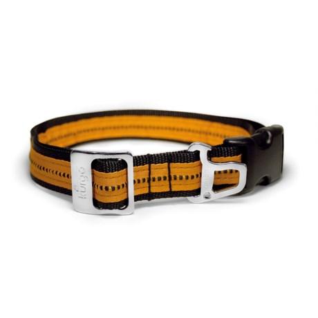 Kurgo Wander Dog Collar in Black/Orange
