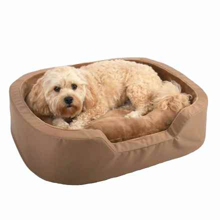 "La Ti Paw Rectangle Ortho Foam Dog Bed - 36x28"" in Copper Brown - Closeouts"