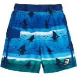 Laguna Shark Tank Eboard Swim Trunks - UPF 50 (For Little Boys)