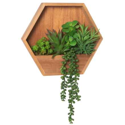 "Le Casa Succulents in Wood Box - 18"" in Natural - Closeouts"