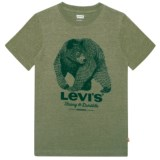 Levi's Graphic Logo T-Shirt - Short Sleeve (For Big Boys)