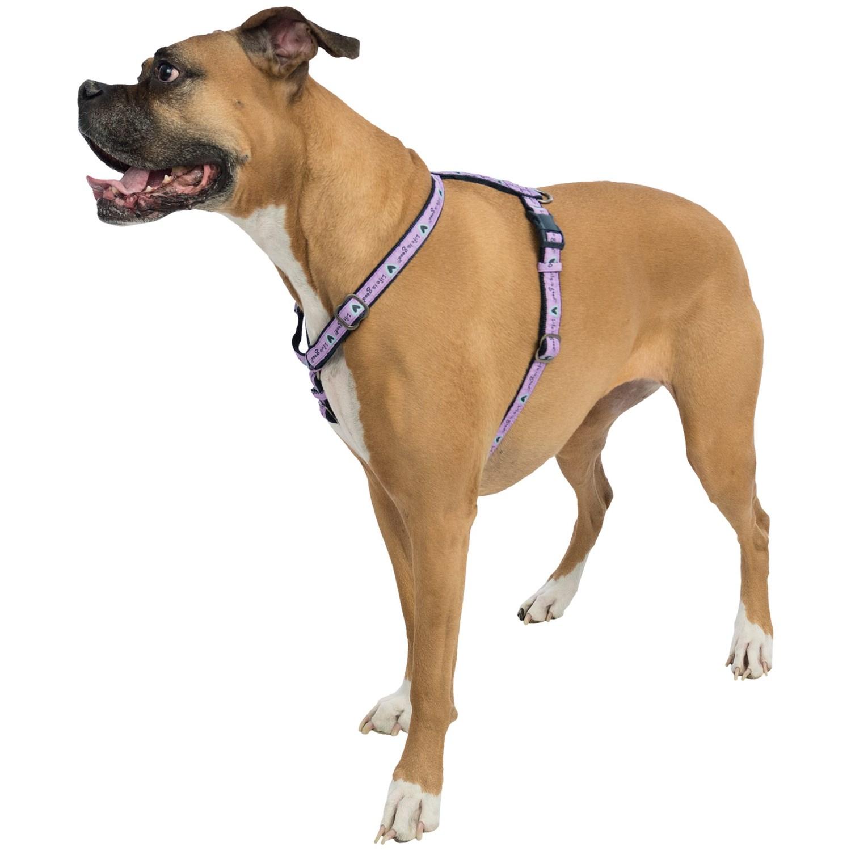 Good Dog Leash