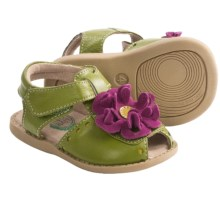 Livie & Luca Bloom Sandals - Leather (For Toddler and Kid Girls) in Lime - Closeouts