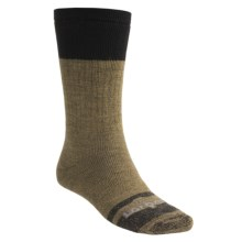 Lorpen Italian Merino Wool Work Socks - Midweight, 2-Pack (For Men and Women) in Brown - 2nds