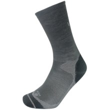 Lorpen Liner Socks - Merino Wool, Crew (For Men and Women) in Grey - Closeouts