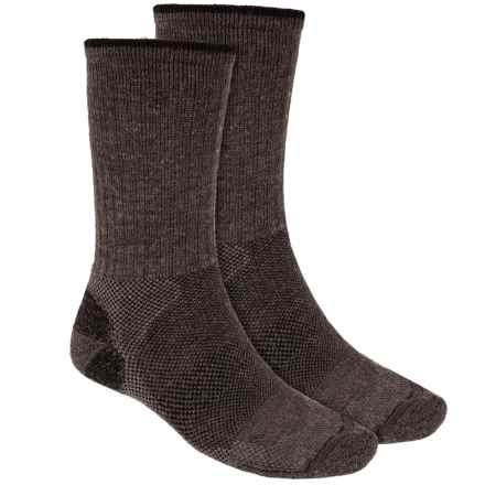 Lorpen Merino Wool Hiker Socks - 2-Pack, Crew (For Men and Women) in Charcoal - 2nds