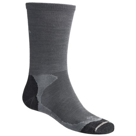 Lorpen Multisport Socks - Merino Wool, 2-Pack (For Men and Women) in Black/Silver