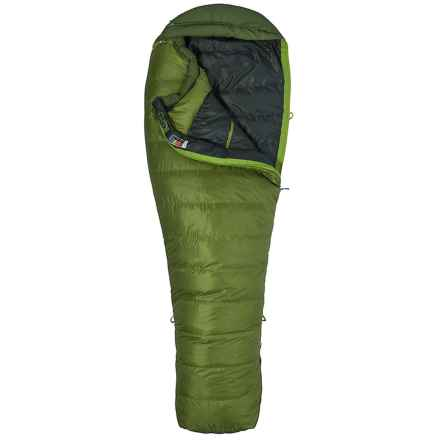 Marmot 30°F Never Winter Down Sleeping Bag - 650 Fill Power, Mummy, Long, Cosmetic Seconds in Cilantro/Tree Green - 2nds
