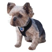 Mega Pet Air Mesh Cloth Basic Dog Harness in Black - Closeouts