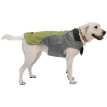 Mega Pet High-Visibility Dog Jacket in Green - Closeouts