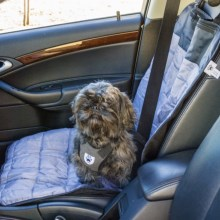 Mega Pet Single Car Seat Dog Mat in Stone/Black - Closeouts