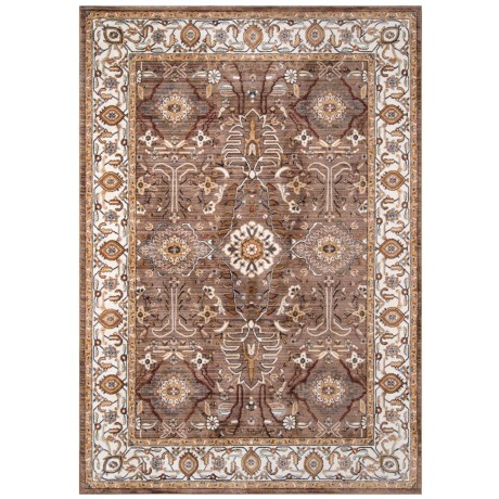 "Momeni Brighton Traditional Area Rug - 8x10"" in Brown"