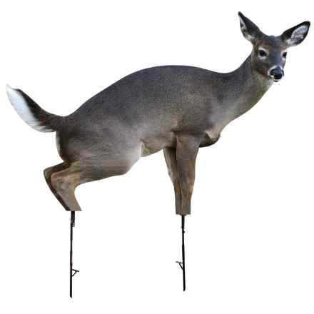 Montana Decoy Estrus Betty Doe Decoy in See Photo - Closeouts