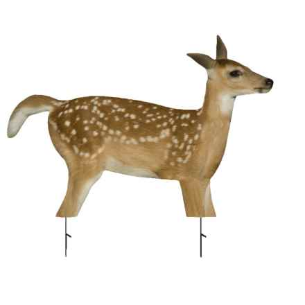 Montana Decoy Fawnzy Fawn Decoy in See Photo - Closeouts