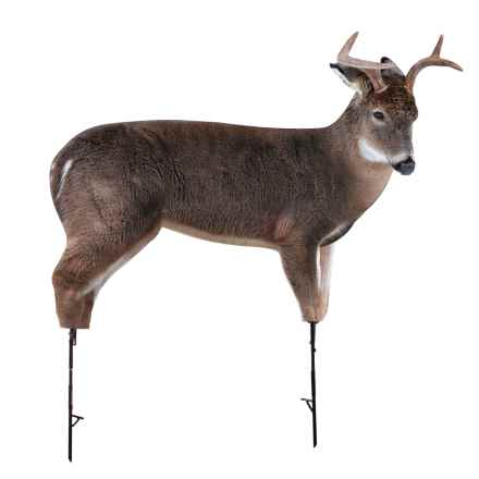 Montana Decoy Freshman Whitetail Buck Decoy in See Photo - Closeouts