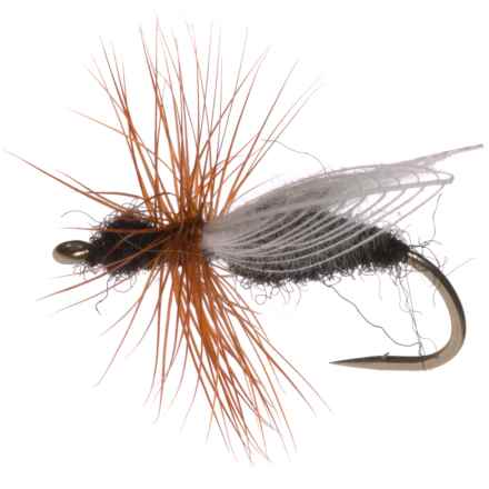 Montana Fly Company CDC Flying Ant Dry Fly - Dozen in Black - Closeouts