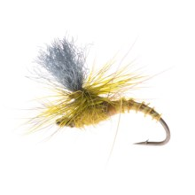 Montana Fly Company Christiaen's GT Adult Dry Fly - Dozen in Green Drake - Closeouts