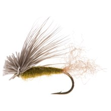 Montana Fly Company X-Caddis Dry Fly - Dozen in Olive - Closeouts