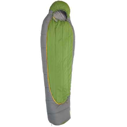 Mountainsmith 35°F Ptarmigan Sleeping Bag - Mummy in Cactus - Closeouts
